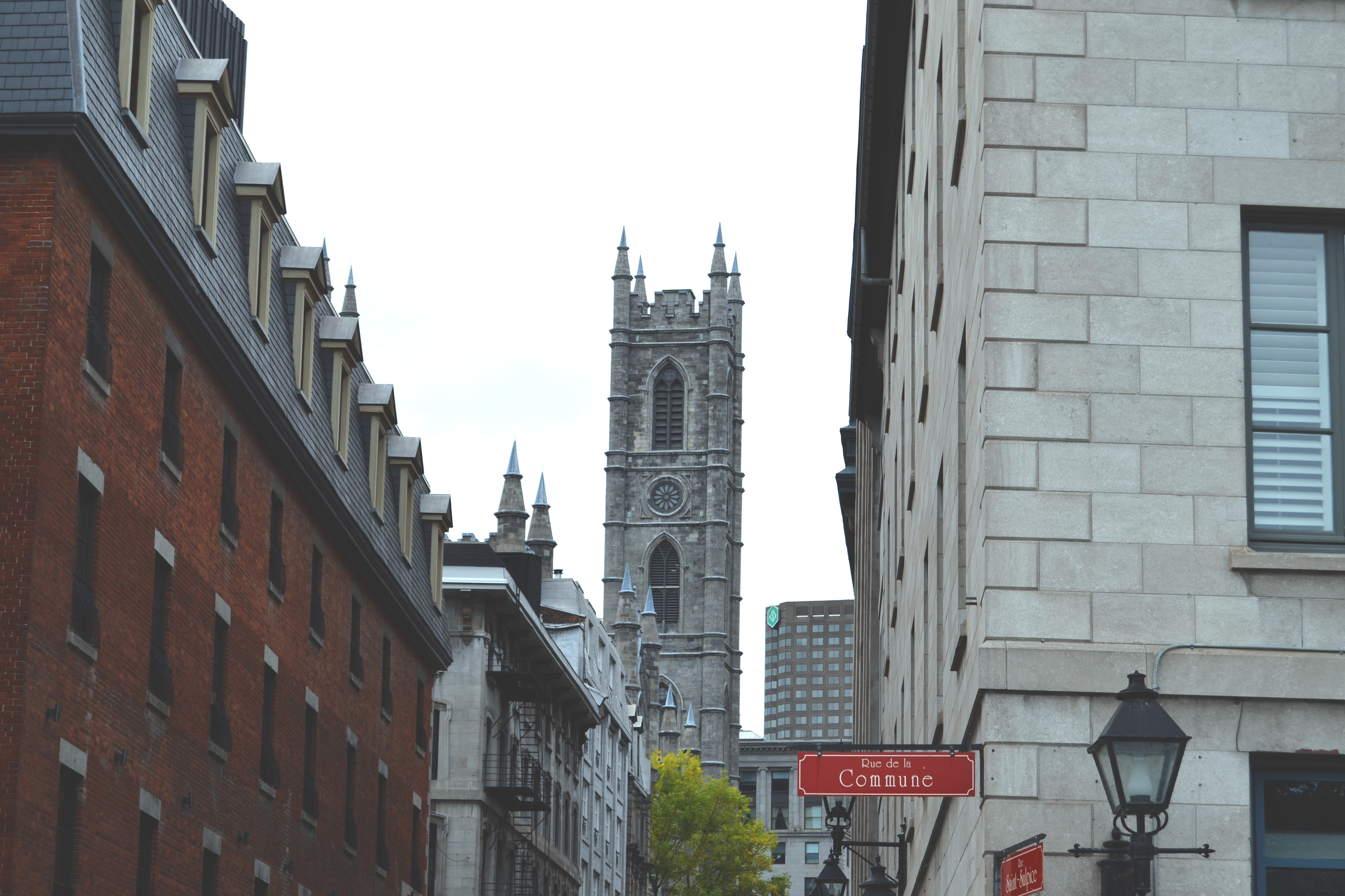 Morningju-canada-Montreal17.jpg